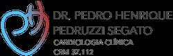 Dr. Pedro Henrique Pedruzzi Segato